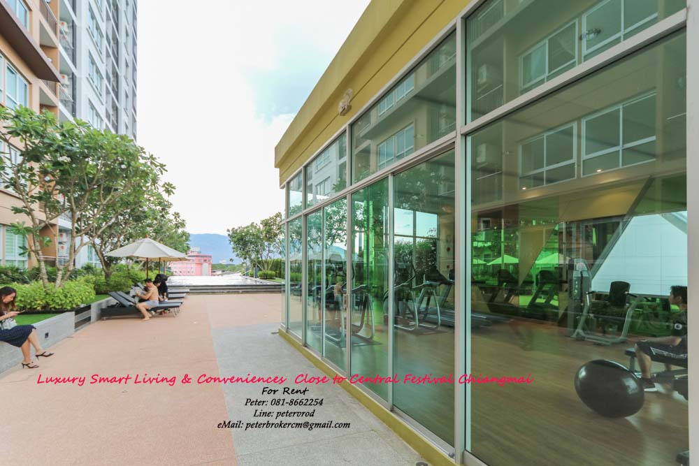 condo for rent chiang mai Supalai Monte