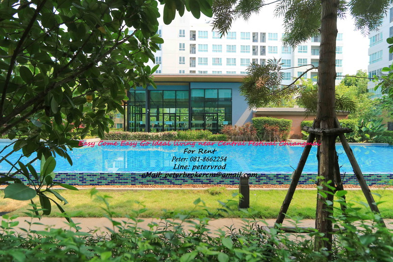 37 Sqm D Condo Nim beside swimming pool Near Central Festival Rent: 16,000 Baht/month