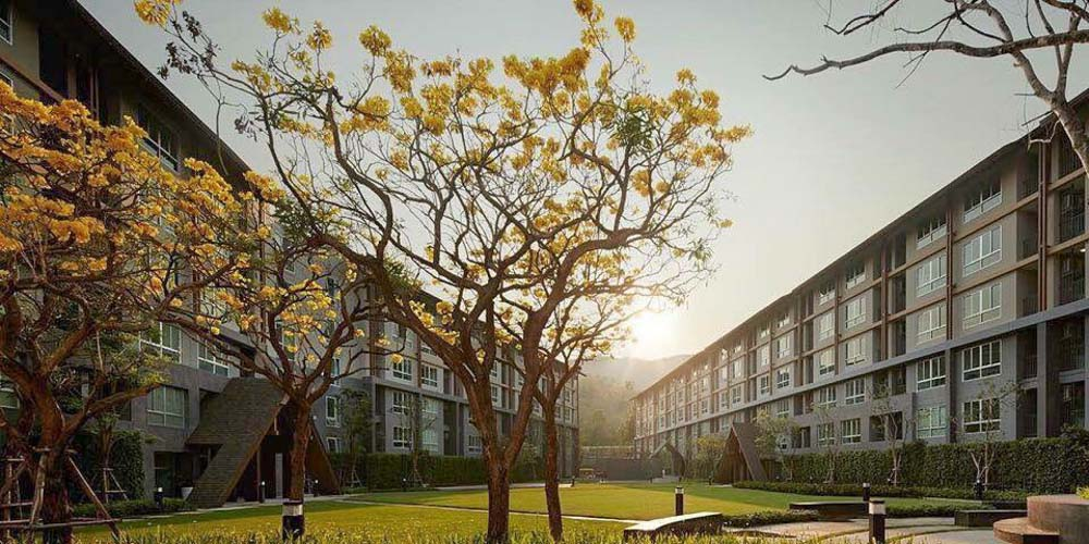 DCondo Campus Resort for rentBeautiful 1 bedroom chiang mai