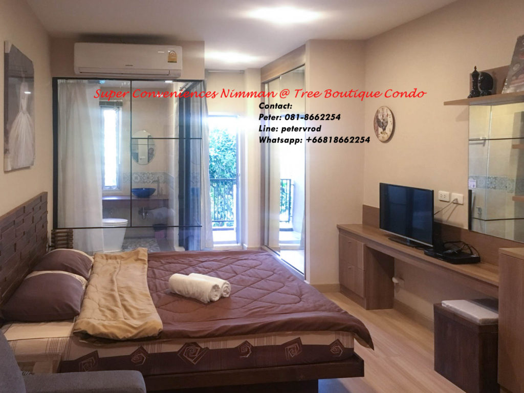 Tree Boutique apartment for sale Nicely Furnished 1 bedroom at chiang mai