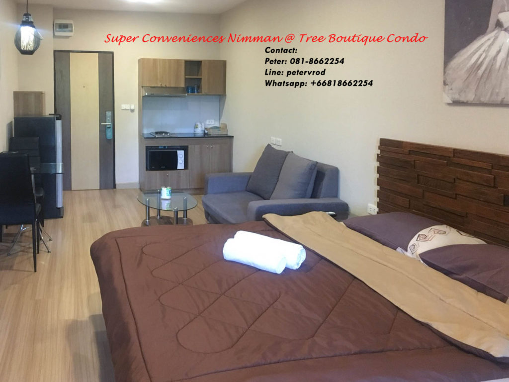 Tree Boutique room for sale Nicely Furnished 1 bedroom chiang mai