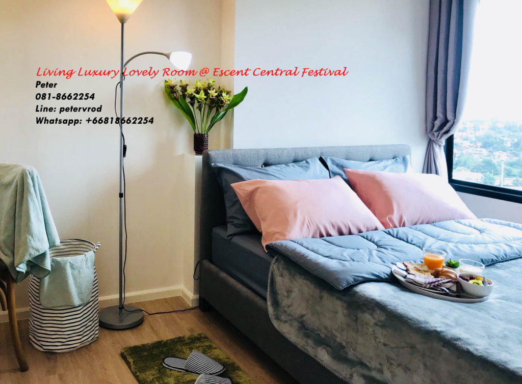 Escent Central Festival Ching Mai room for rent Beautiful 1 bedroom chiang mai