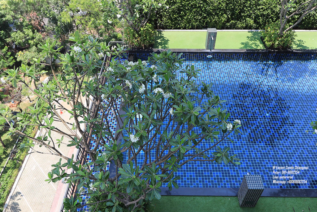 Supalai Monte @ Viang apartment for sale Attractive 1 bedroom at chiang mai