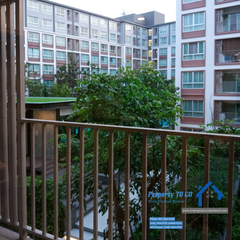 2 Bedroom Pool View and Garden View Corner Room at Dcondo Ping Condo for Sale 60 Sqm 3rd floor